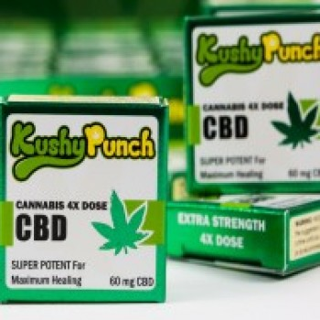 Kushy Punch CBD