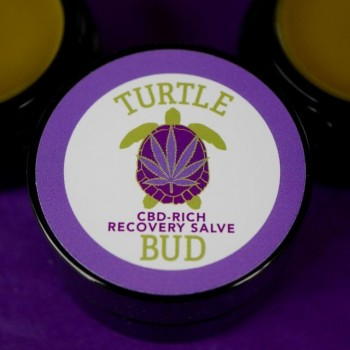 CBD-Rich Recovery Salve - Topical - Turtle Bud