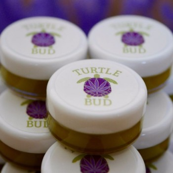 CBD-Rich Recovery Salve - 5ml Sample - Topical - Turtle Bud