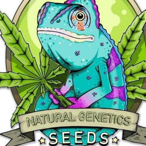 Natural Genetics Seeds Logo