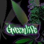 GREENLIFE Seeds