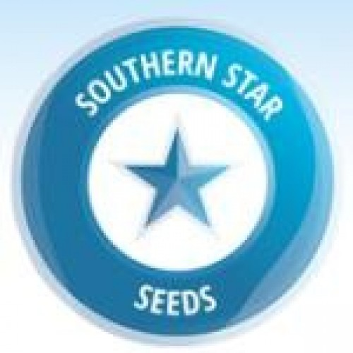 Southern Star Seeds Logo