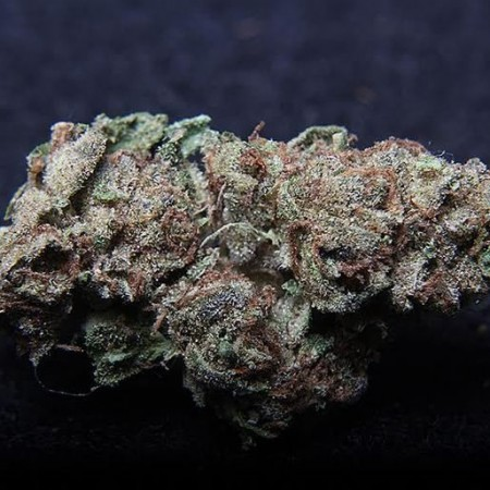 Strains Related to Girl Scout Cookies - Cookie Family Smarties Strain