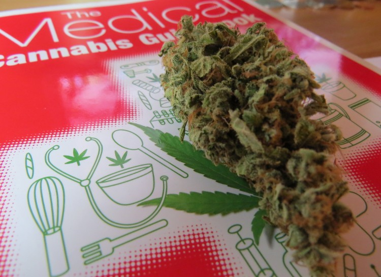 medical-cannabis-guide-book