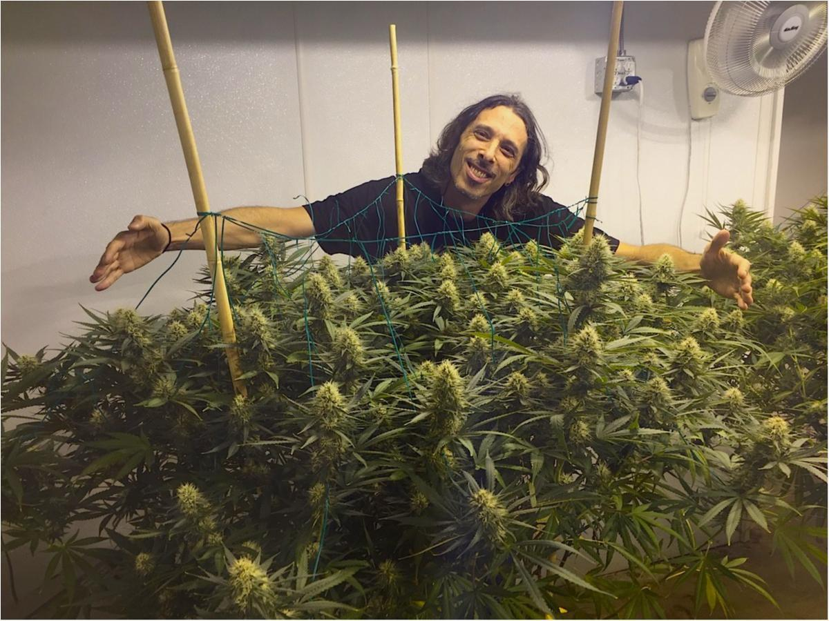 Divided Grow Room