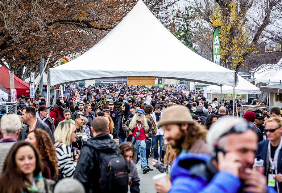 Thousands of People Attended the 2015 Emerald Cup