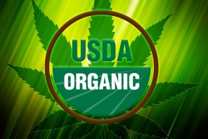 US Department of Agriculture Approves Colorado Hemp Farm to Market Products as Organic