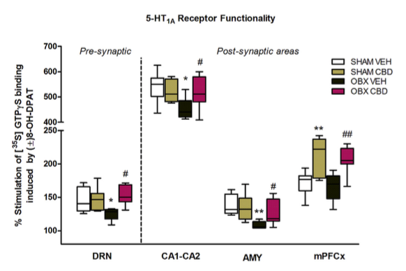 Figure 4. Box and whiskers plot of 5-HT1A receptors functionality in different brain areas after chronic administration of CBD. A decreased (±)8-(OH)-DPAT stimulated