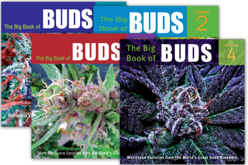 BigBudSpecial_covers