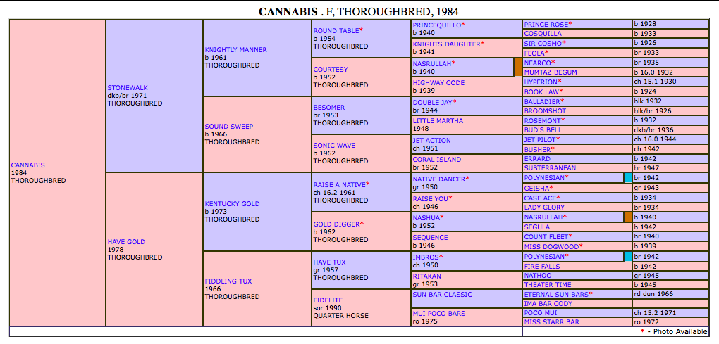 Cannabis_pedigree