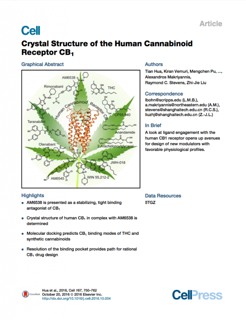 Crystal Structure of the Human Cannabinoid Receptor CB1