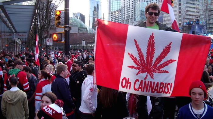 why-americas-medical-marijuana-money-may-start-heading-to-canada-1435595744